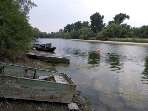 Am 8. August fand das Sommerfest des RSB Rhein-Neckar am Altrhein statt - ohne Schnacken, Foto: Avanti²