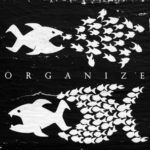 Organize: Viele kleine Fische können gemeinsam große Fische besiegen