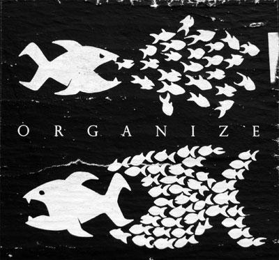 Organize: Viele kleine Fische können große Fische besiegen