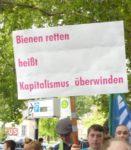 FFF-Demo in Mannheim, 19. Juli 2019 (Foto:Privat)
